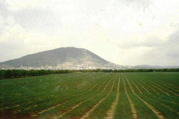 Obraz (154)f